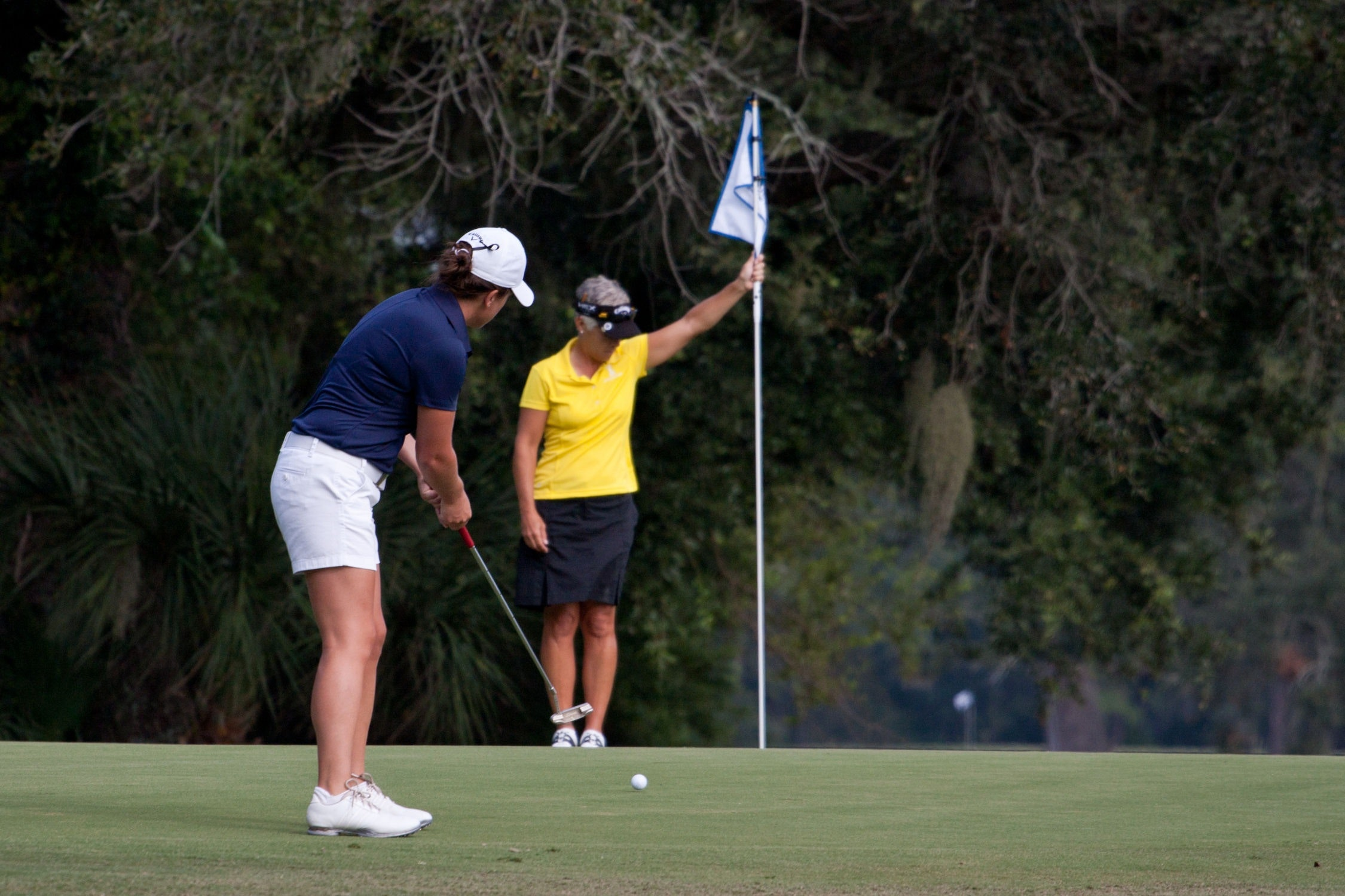 Golf er en populær sport